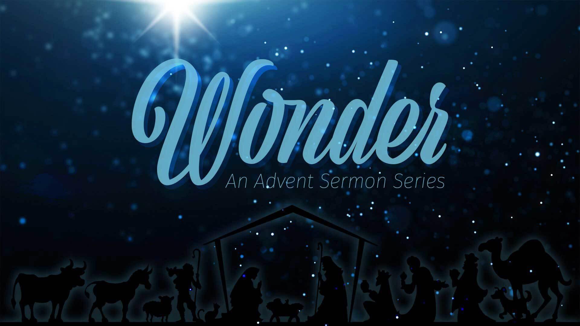 Wonder -- Week 3